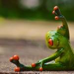 トレーニング中のカエル
