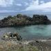 【旅行記】北海道礼文島の旅!レンタル原付きで島1週してきました!